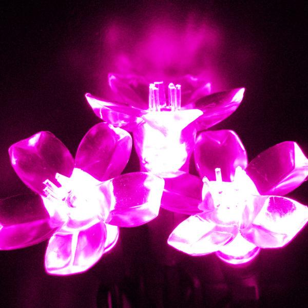 Pink flower-shaped LED light string